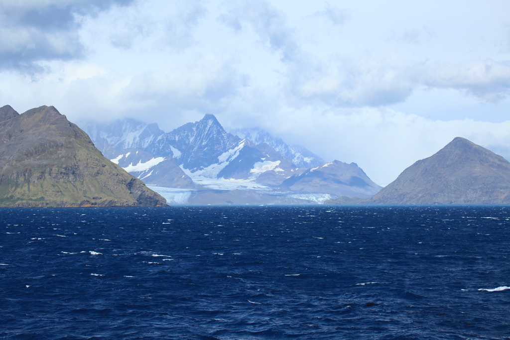 Antarctica South Georgia