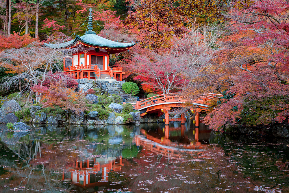 Japan Attractions 44